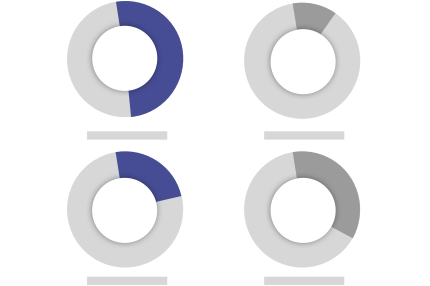 Kreisdiagramme zeigen Analyse zu anderen Gehältern