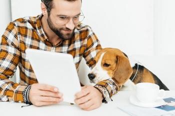 Der Bürohund – Vor- und Nachteile von Vierbeinern am Arbeitsplatz