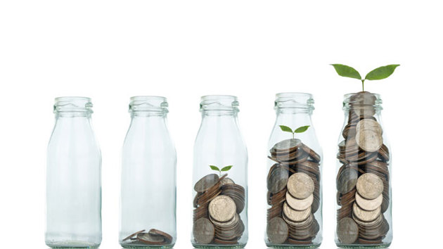 Mehrere Glasflaschen sind in aufsteigender Höhe mit Geldmünzen befüllt, in denen eine kleine Grünpflanze gepflanzt ist.